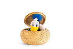 Duck greets coming out of the straw basket Stock Photos
