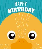 Duck Happy birthday card. Duck cartoon on happy birthday card vector illustration graphic design Royalty Free Stock Image