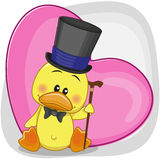 Duck in hat Royalty Free Stock Images
