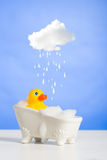 Duck Having A Bath Stock Photography