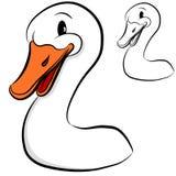 Duck Head Stock Photos