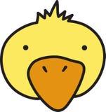 Duck Head Foto de archivo