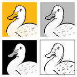 Duck Head Illustration Royalty Free Stock Photos