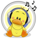 Duck with headphones Stock Photography