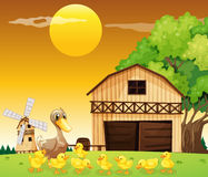 A duck and her ducklings outside the farmhouse. Illustration of a duck and her ducklings outside the farmhouse Royalty Free Stock Photography