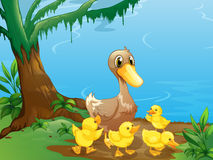 A duck and her ducklings at the riverbank royalty free illustration