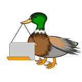 A duck holding a big blank paper in his beak Royalty Free Stock Photo