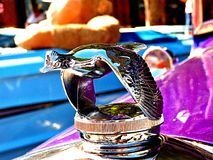 Chrome duck hood ornament on a restored automobile royalty free stock images