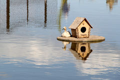 Duck house on the lake. photo Stock Images