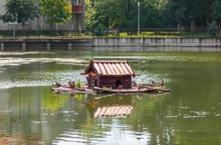 Duck house on a pond. Kaliningrad. Russia. Royalty Free Stock Image