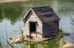 Duck house at the pond Royalty Free Stock Images