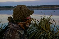 Duck Hunter In Blind Waiting. Duck hunter sits in a blind during the early morning waiting for birds to fly Royalty Free Stock Photo