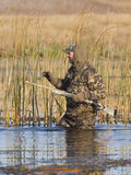 Duck Hunting. Hunter walking in the reeds while duck hunting Stock Photos