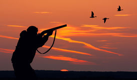 Duck Hunting Royaltyfri Bild