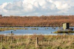 Duck Hunting Blind, regioni paludose di Wairarapa del lago, Nuova Zelanda fotografia stock