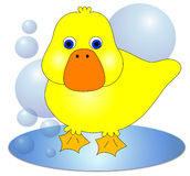 Duck Illustration Royalty Free Stock Photography