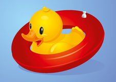 Duck Inflatable Circle. Duck with red inflatable circle Stock Photos