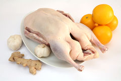 Duck and ingredients Stock Photo