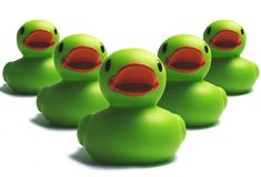 Duck invasion. Duck green invasion on the white background Royalty Free Stock Image
