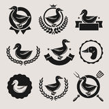 Duck labels and elements set. Vector Stock Photography