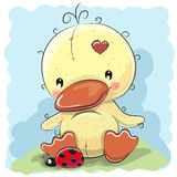 Duck with ladybug. Greeting card Cute Cartoon Duck with ladybug royalty free illustration