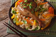 Duck leg with rice noodles and vegetables closeup horizontal Royalty Free Stock Image