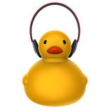 Duck listing music Stock Photography