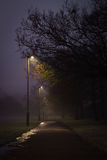 Duck Lit Path. A path at duck being lit by a few street lights Royalty Free Stock Images