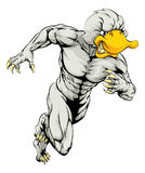 Duck mascot running Stock Photos