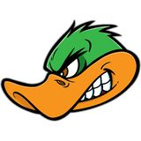 Duck Mascot. Vector illustration of a Duck Mascot royalty free illustration