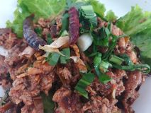 Duck meal with spicy and Thailand herb. Famous Cuisine of Eastern Thailand royalty free stock images