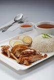 Duck Meat Rice assado Imagens de Stock Royalty Free
