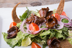 Duck meat with salad Stock Image