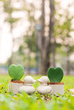 Duck mini flowerpot with heart flower on the garden Stock Photography