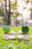 Duck mini flowerpot with heart flower on the garden Stock Images