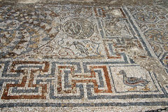 Duck mosaic    from ancient Greek Royalty Free Stock Image