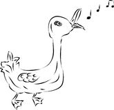 Duck music Stock Photography