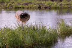 Duck nesting box at a water treatment wetland in Finland Stock Photo