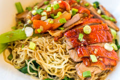 Duck noodle Stock Image