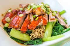 Duck noodle Stock Photography