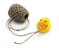 Duck and noose Stock Images