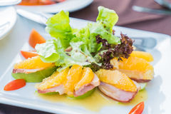 Duck with orange and apple salad Stock Images
