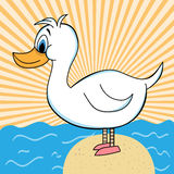 Duck out of Water Cartoon Character. White duck cartoon standing on a rock surrounded by the ocean. Orange sunburst background stock illustration
