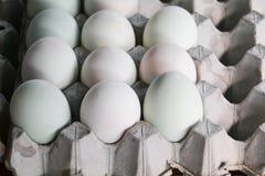 Duck ovos na bandeja de papel no mercado Fotografia de Stock