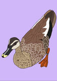 The Duck paint. Purple background Royalty Free Stock Images