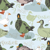 Duck pattern Royalty Free Stock Images