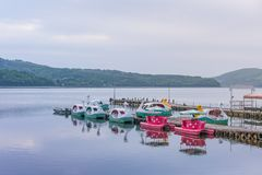 Duck Pedal boats at Lake Kawaguchiko Mount Fuji is a popular recreational site for boating.  stock photos