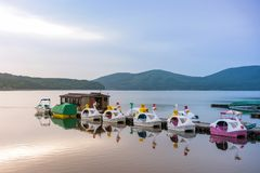 Duck Pedal boats at Lake Kawaguchiko Mount Fuji is a popular recreational site for boating.  royalty free stock photos