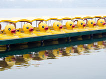 Duck pedal boats in a row Royalty Free Stock Photos