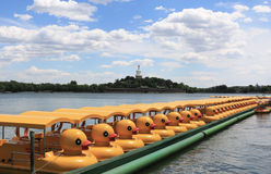 Duck pedalo in Beihai park in Beijing Stock Images